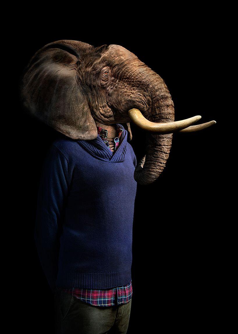 12+ Animal head human body images