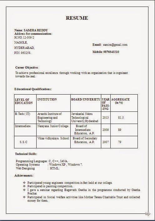 experience cv format Sample Template Example of Excellent Curriculum