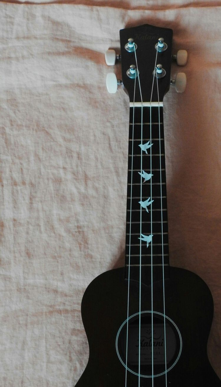 Pin by Autumn Rose on Ukulele Ukulele art, Painted