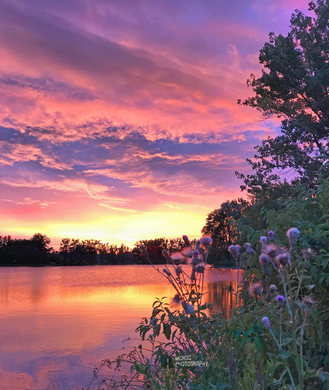 Canvas Gorgeous Sunset Reflection Lake Wildflowers Upstate New York Summer Landscape Photography Fine Art Landscape Photography Landscape Photography Tips