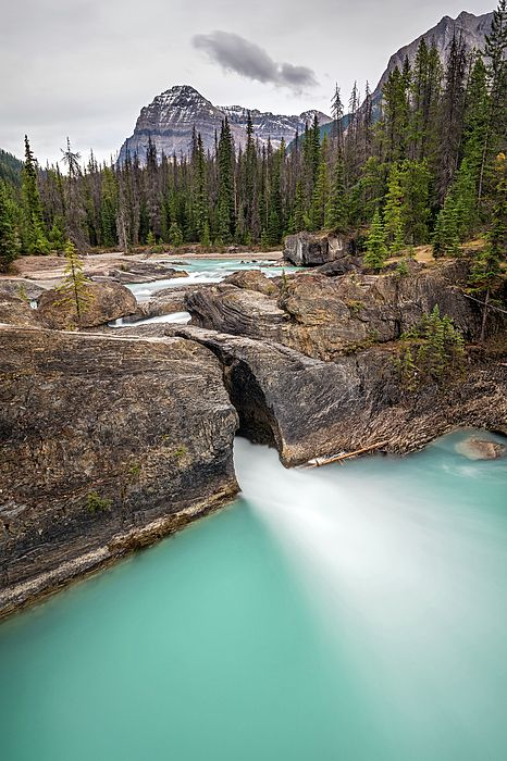 Natural bridge and the turquoise water of Kicking Horse river in Yoho National Park, British Columbia, Canada