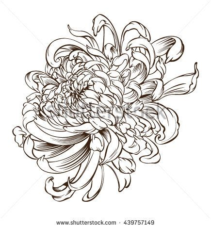 Japanese Flower Tattoo Chrysanthemum Flower Blossoms Stock ...