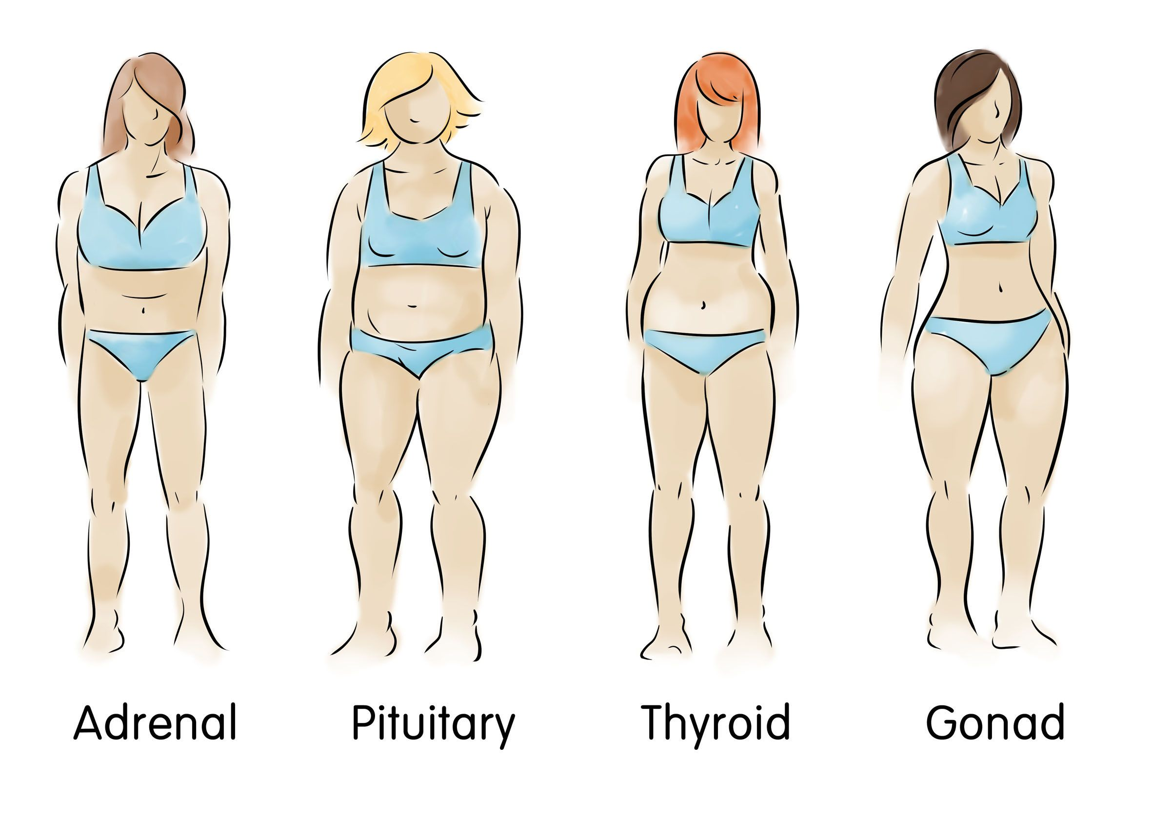 What Is My Body Type Do You Have A Pear Body Type An Adrenal Body Type Or An Endomorph Body