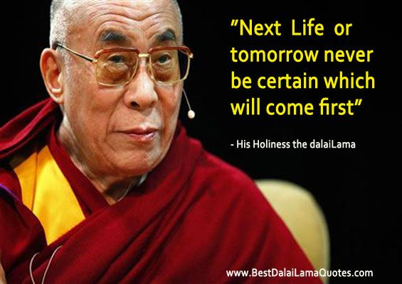 Dalai Lama Quotes Life Prepossessing Next Life Or Tomorrow  Never Be Certain Which Will Come First