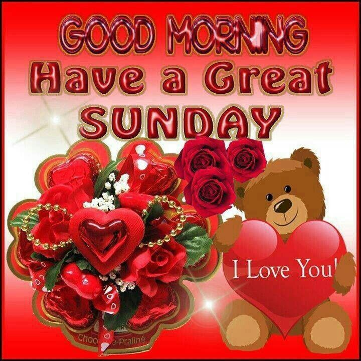 Have great day | Good morning happy sunday, Good morning ...