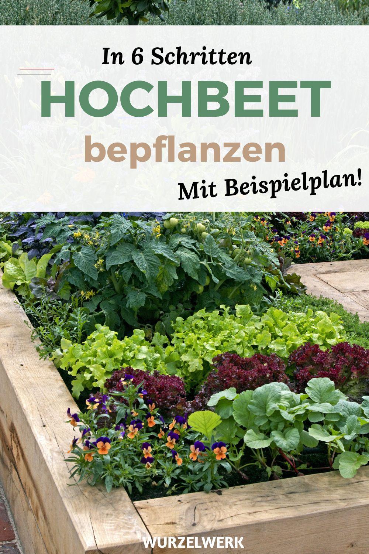 Hochbeet Bepflanzen In 6 Schritten Beispielplan Terassegestalten Du Hast Ein Hochbeet Gebaut Und Fragst Dich Jetz In 2020 Plants Outdoor Gardens Back Gardens