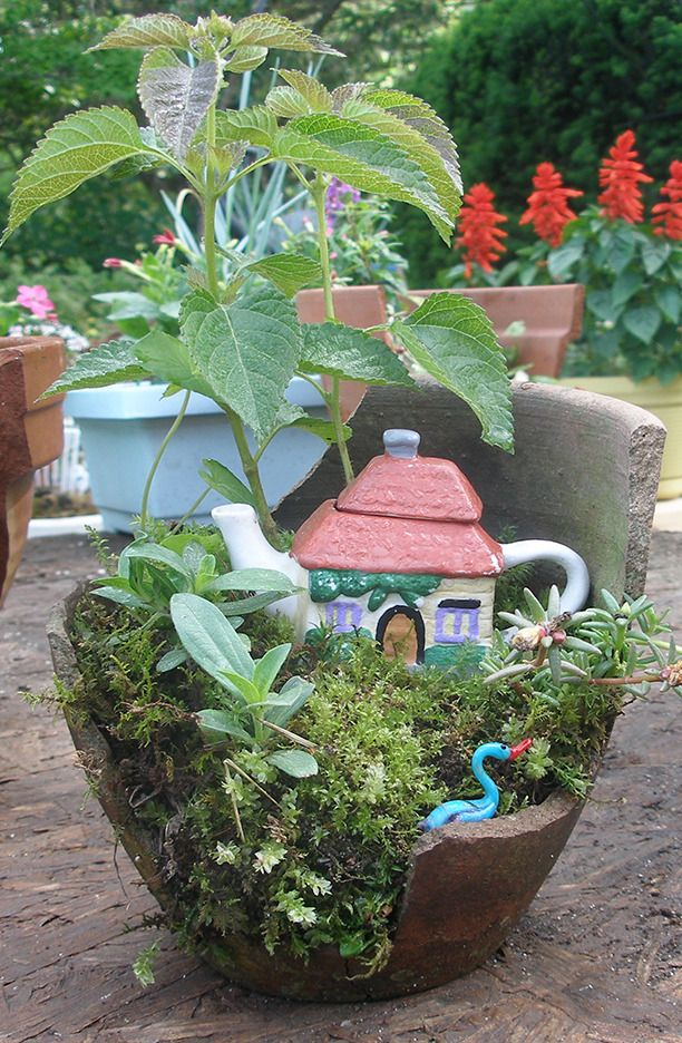Miniature gardening forum this year 39 s community plant sale broken pot exhibits all things - Fairy garden containers for sale ...