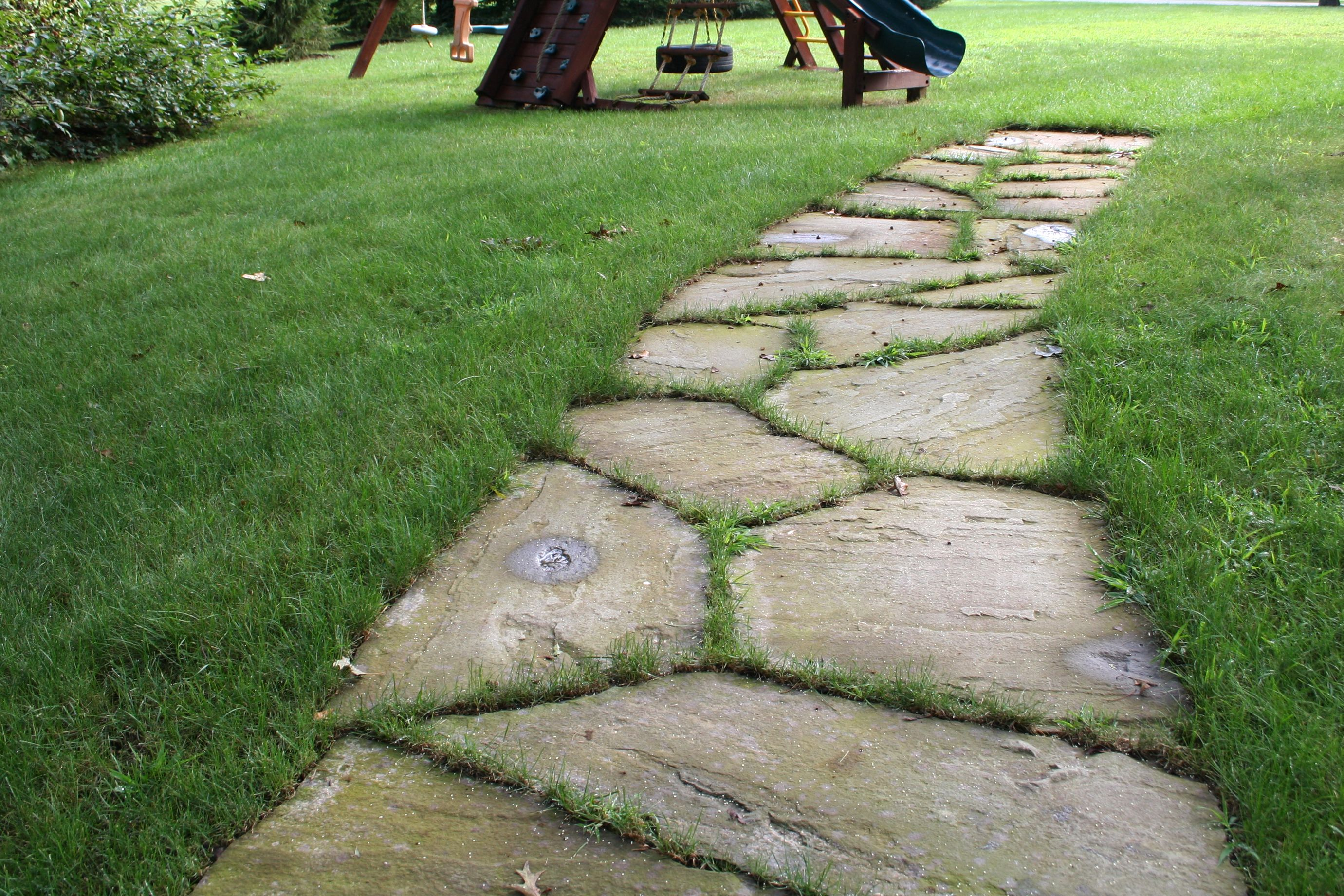 Enchanting Small Garden Landscape Ideas With Stepping Walk: Stone Stepping Stone Walkway Set In The Lawn
