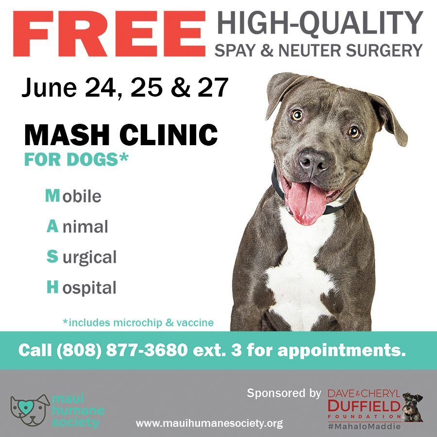 Aloha Here S A Great Opportunity To Get Your Dog Spayed Or Neutered For Free Mauihumanesociety Dogs Spayed Neutered Furbabies Dog Spay Neuter Dogs