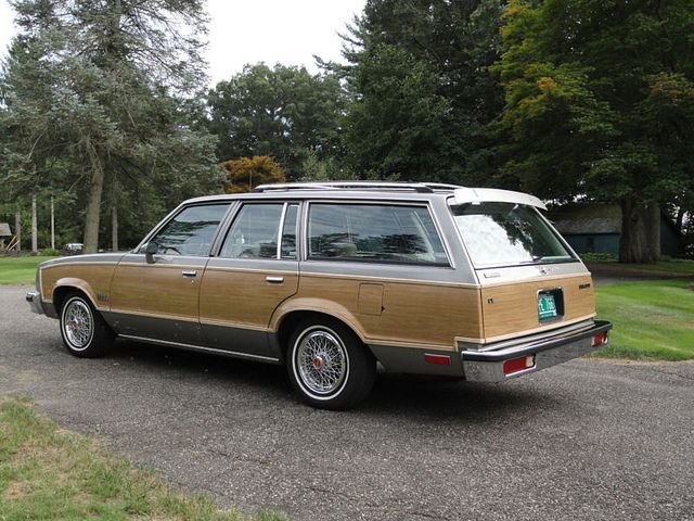 1981 Chevrolet Malibu Classic Estate Station Wagon First Car