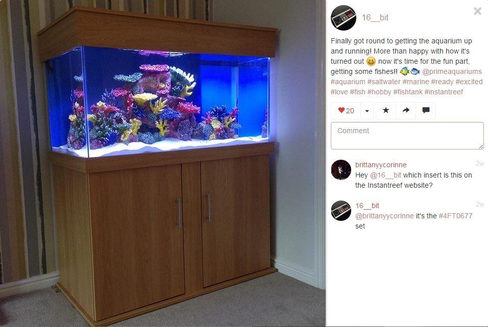 prime aquariums marine fish tank manufacturer uk prime