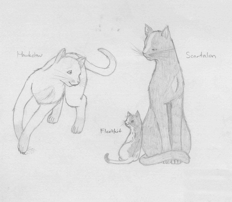 How Do You Draw A Warrior Cat Warrior Cats Family 1 By