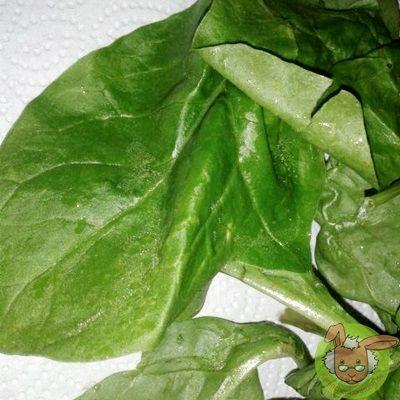Blattspinat. Liste über Gemüsesorten die gut gefüttert und die weniger gefüttert werden sollten