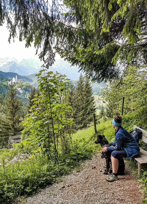 Der Schutzengelweg In Schwangau Die Bergfreaks Urlaub Mit Hund In 2020 Urlaub Urlaub Mit Hund Neuschwanstein