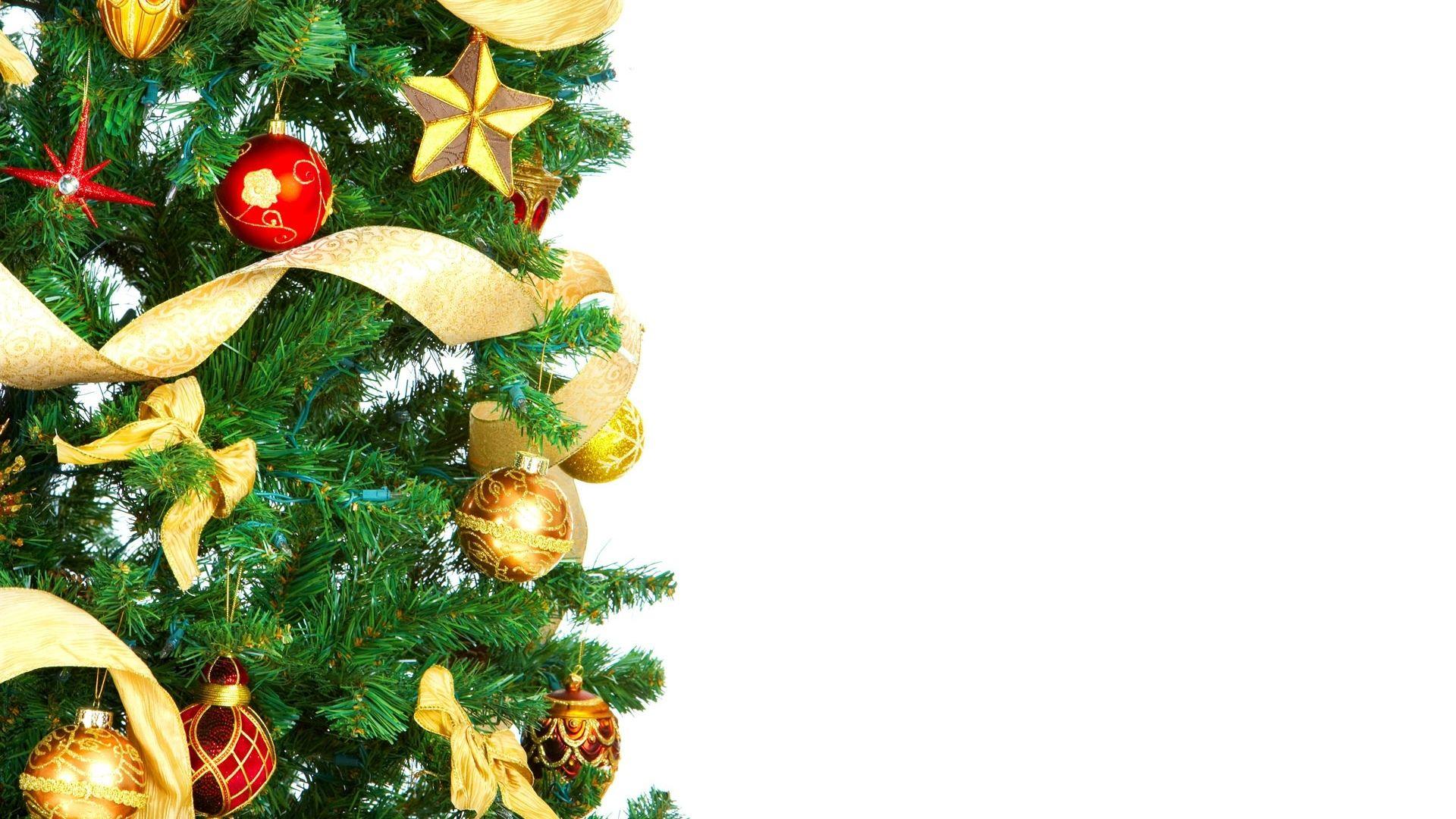 Good Wallpaper High Resolution Christmas - 7d519c80cd5dbac7647ec4791d2ada23  Perfect Image Reference_16732.jpg