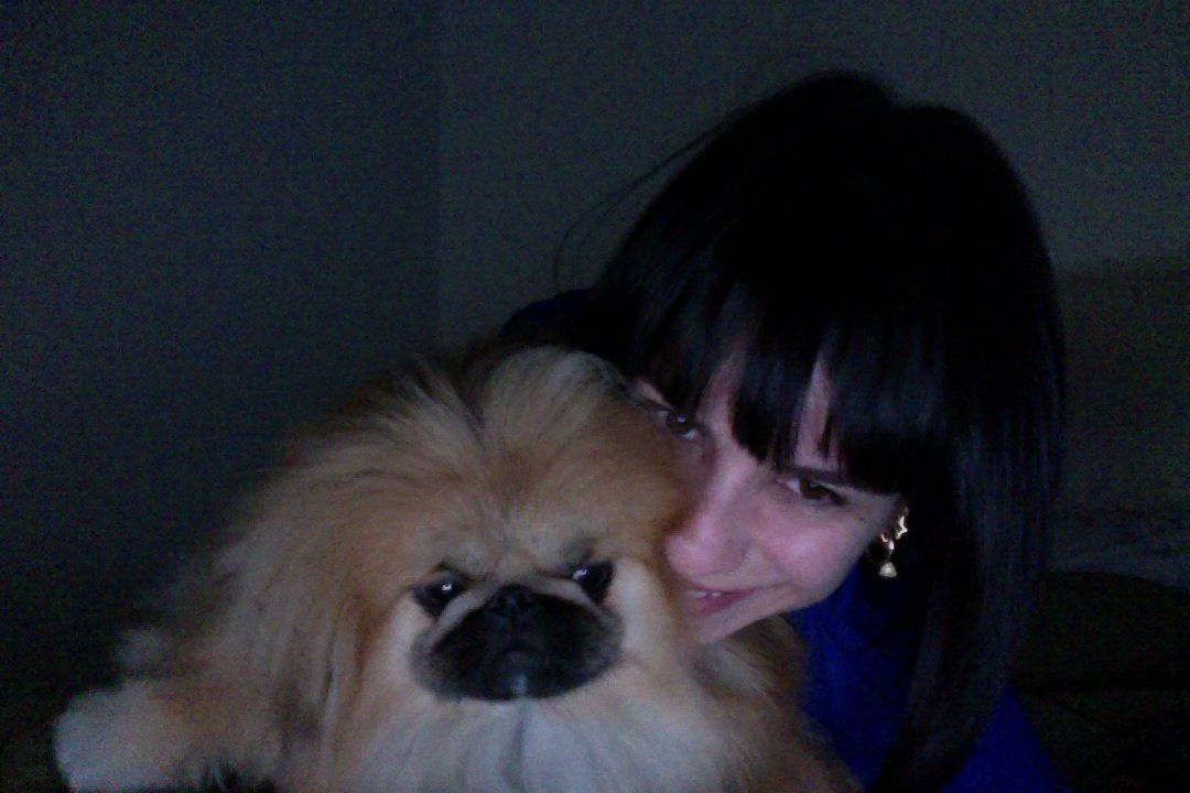 meu benedito, my lion dog