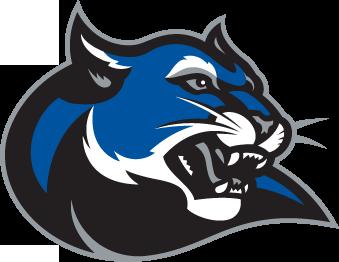 culverstockton college wildcats athletics logo cool