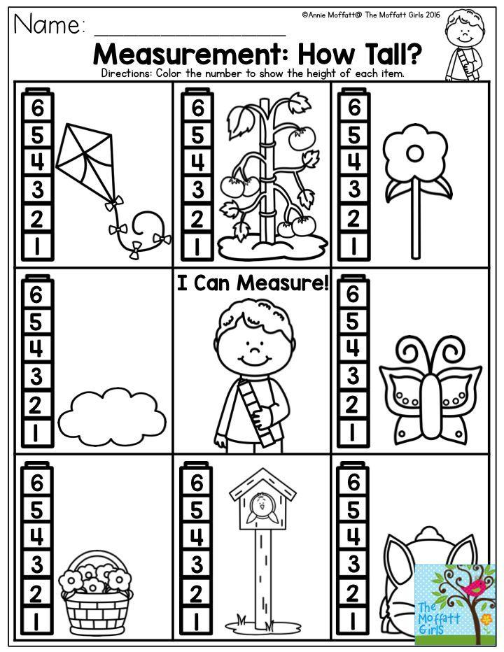 Tall And Short Worksheets For Kindergarten