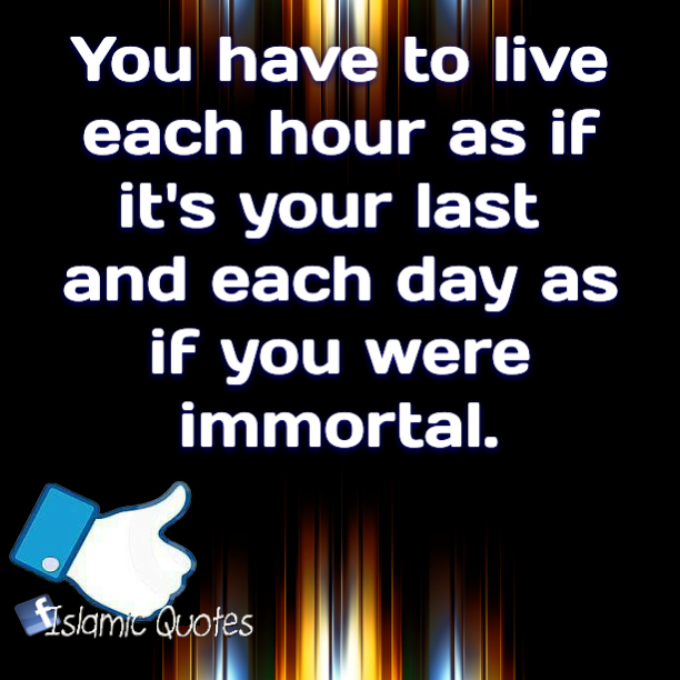 You have to live each hour as if it's your last and each day as if you were immortal.