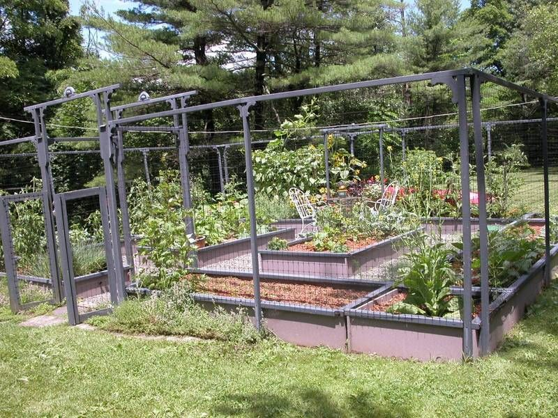 small garden fence ideas vegetable gardening in limited space