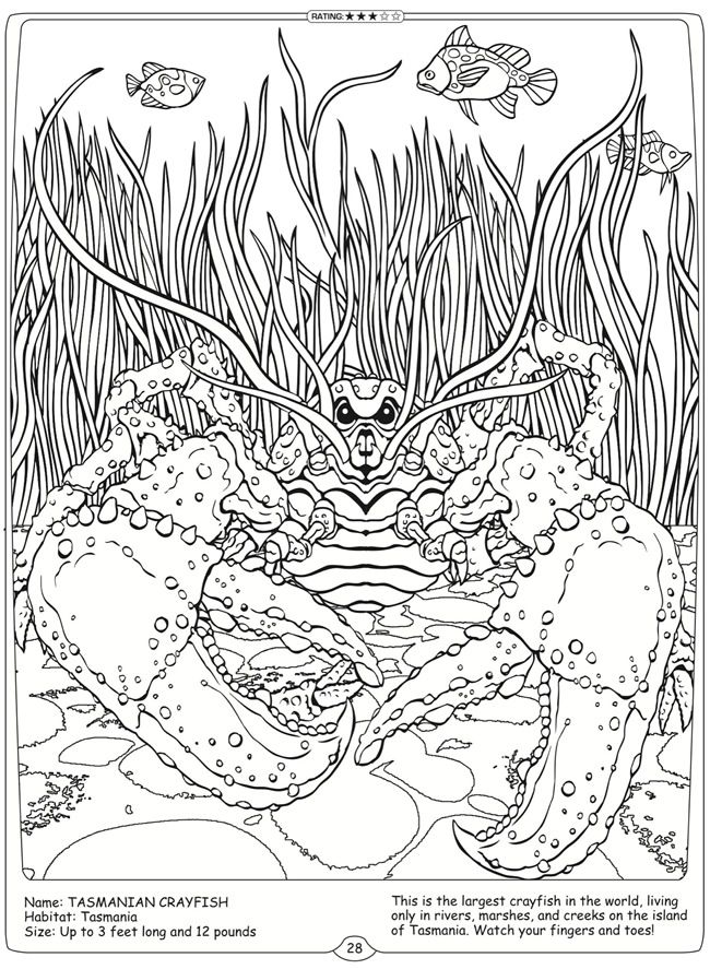 Welcome to Dover Publications River Monsters of the World ...