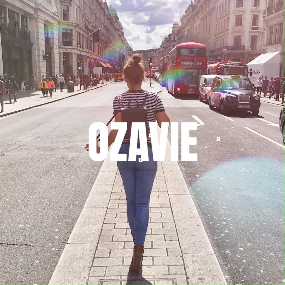 Ozavie Handbags Video In 2021 Vegan Clothing Vegan Fashion Vegan Handbags