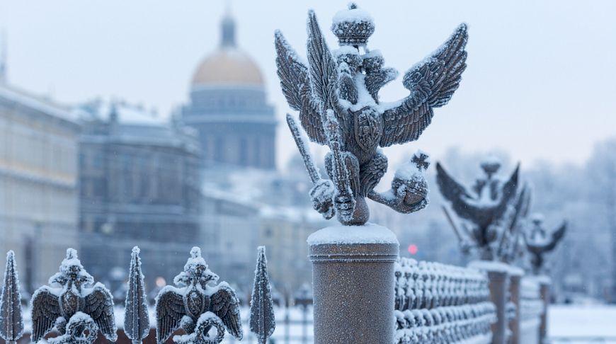Люблю тебя, Петра творенье!»: зимние фото Петербурга | Санкт петербург,  Город, Заплаканное лицо