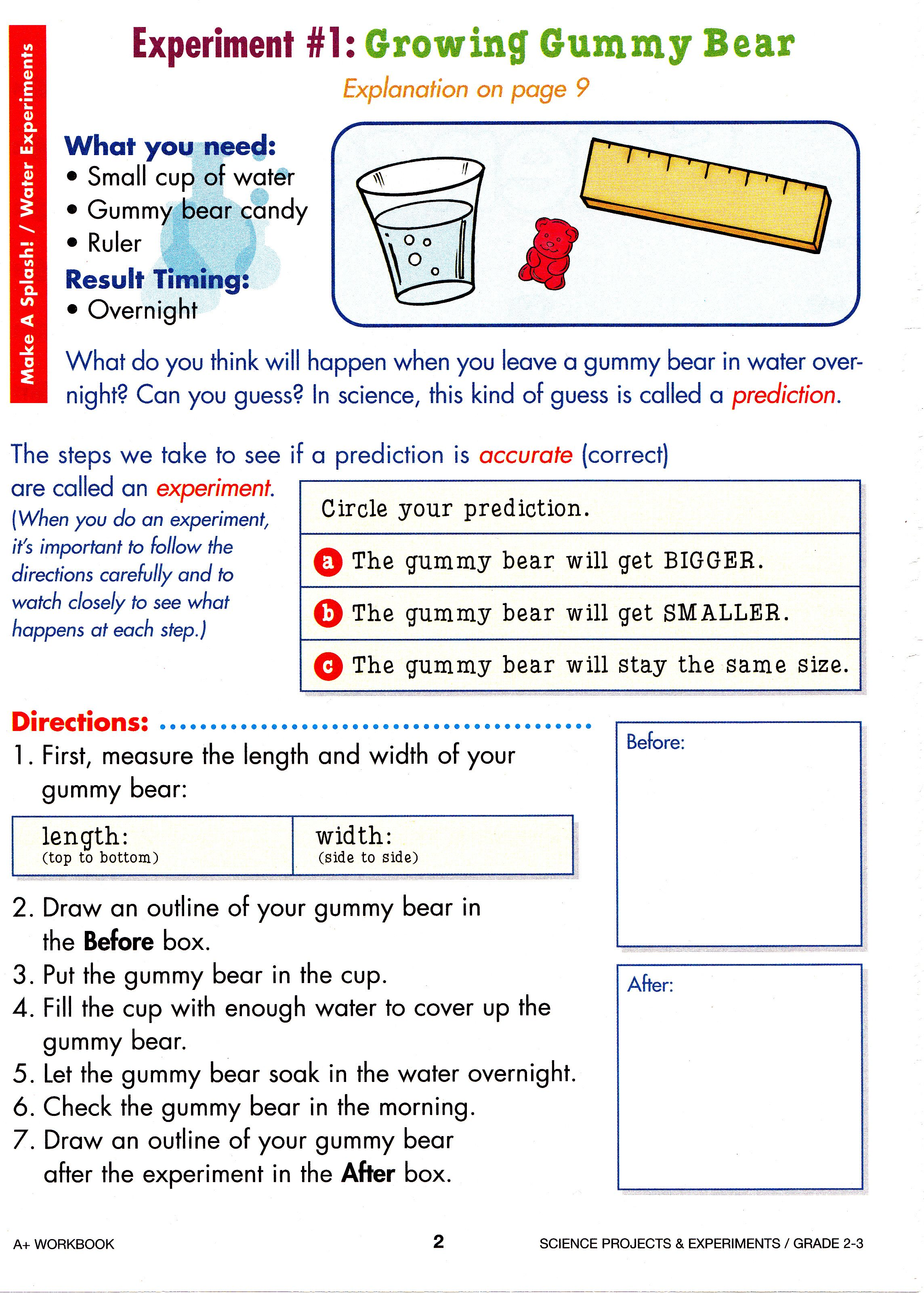 Printables Of Gummy Bear Experiment Worksheet