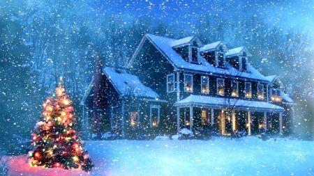 Snowy Christmas.Snowy Christmas Coldness Trees Skyphoenixx1 Snow