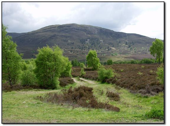 what to do in aviemore area