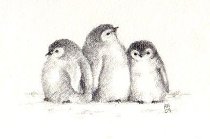 Line Drawing Penguin : 3 little penguin chicks original pencil sketch postcard paper