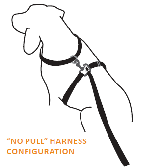 thunderleash can be used as a straight or as a safety no