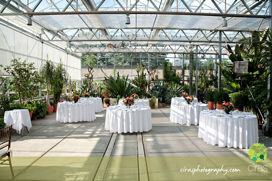 Liz John180w Liz John Botanical Center Providence Ri Wedding
