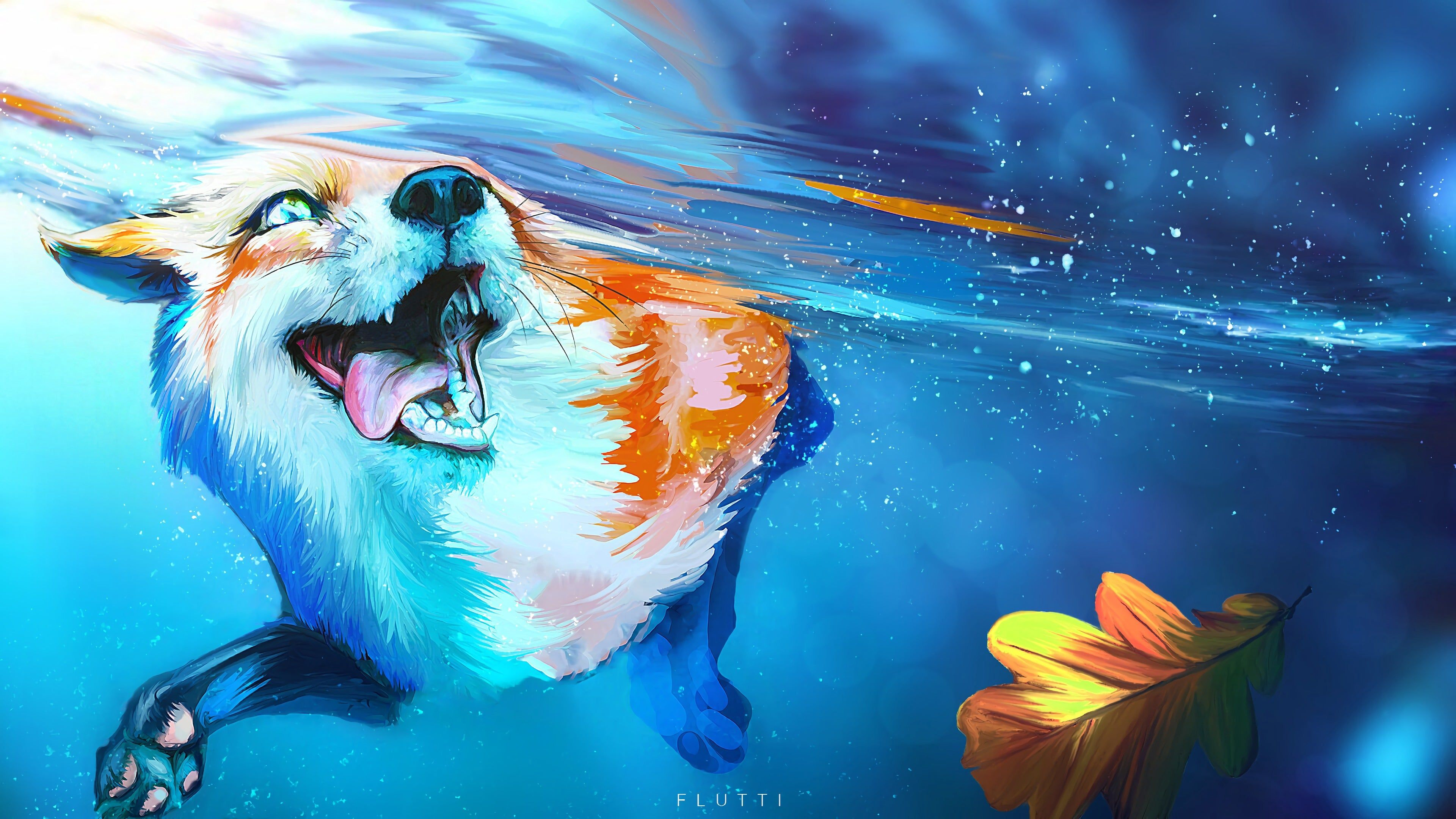 Fox Tongue Protruding Water wallpaper Cat with blue eyes