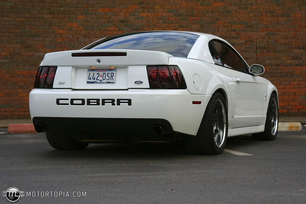 2003 mustang cobra svt photo of a 2003 ford mustang svt cobra 03 cobra - 2003 Ford Mustang Cobra Terminator