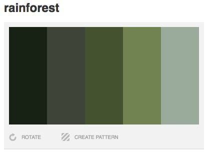 Grey Green Color Palette Dark Rainforest