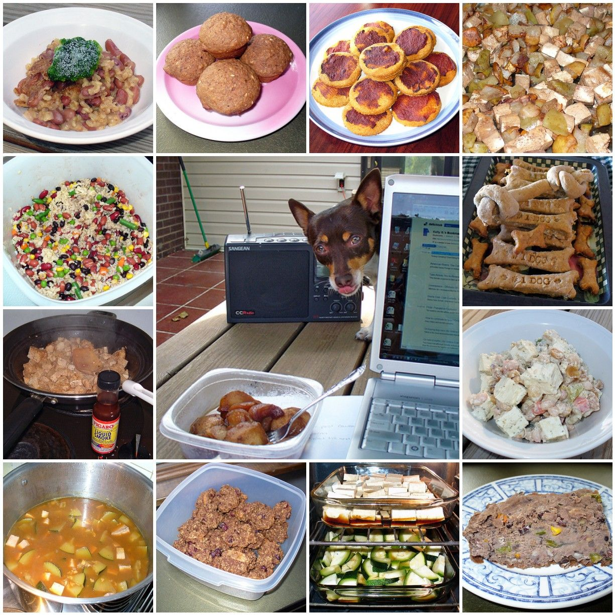 2 Healthy Homemade Dog Food Recipes Dog Food Recipes Dog