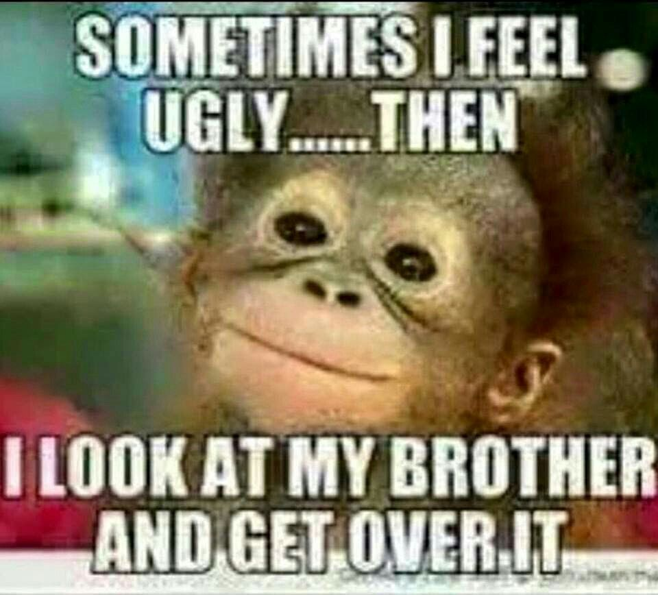 7d5b512e4b5e8aeb0a3dfed080725508 image result for funny thinking of you brother quotes humor