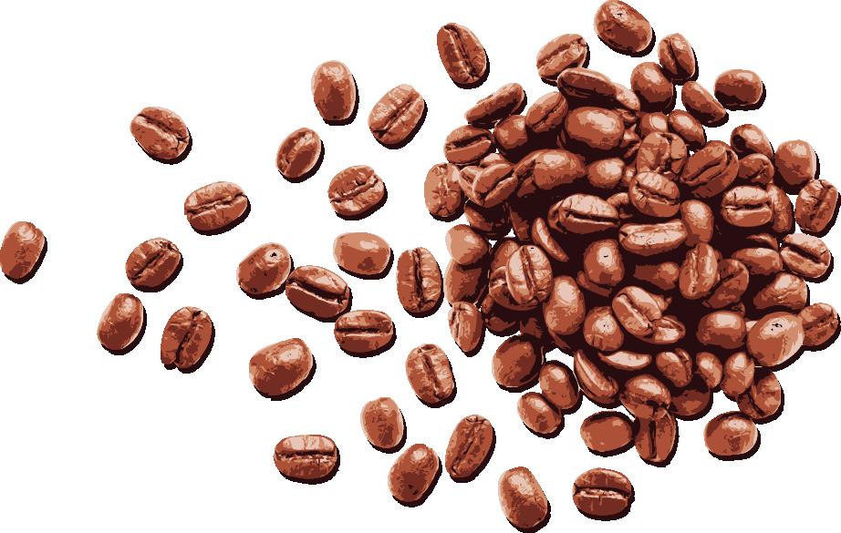 Hasil gambar untuk biji kopi vektor Kopi, Pecinta kopi