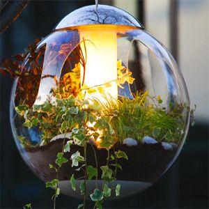 Bulle Lumineuse Lustre Vegetal Atmosphere Jardins Suspendus Jardins Deco Jardin
