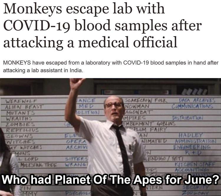 So Apparently This Actually Happened You Can Google The Headline And Find The Article Funny Really Funny Memes Funny Relatable Memes