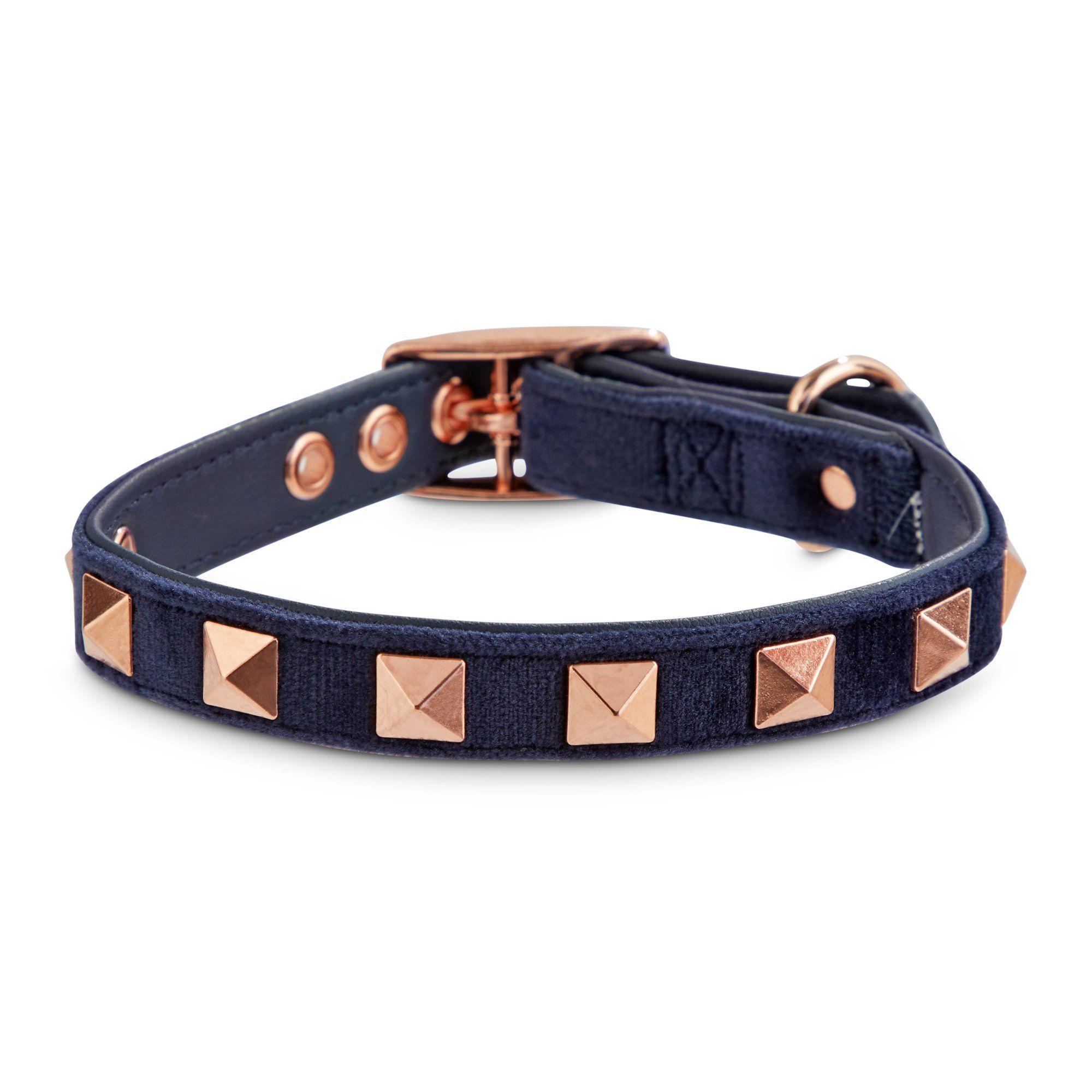 Bond Co Blue Velvet And Rose Gold Dog Collar X Small Small Petco In 2020 Gold Dog Collar Dog Collar Studded Dog Collar
