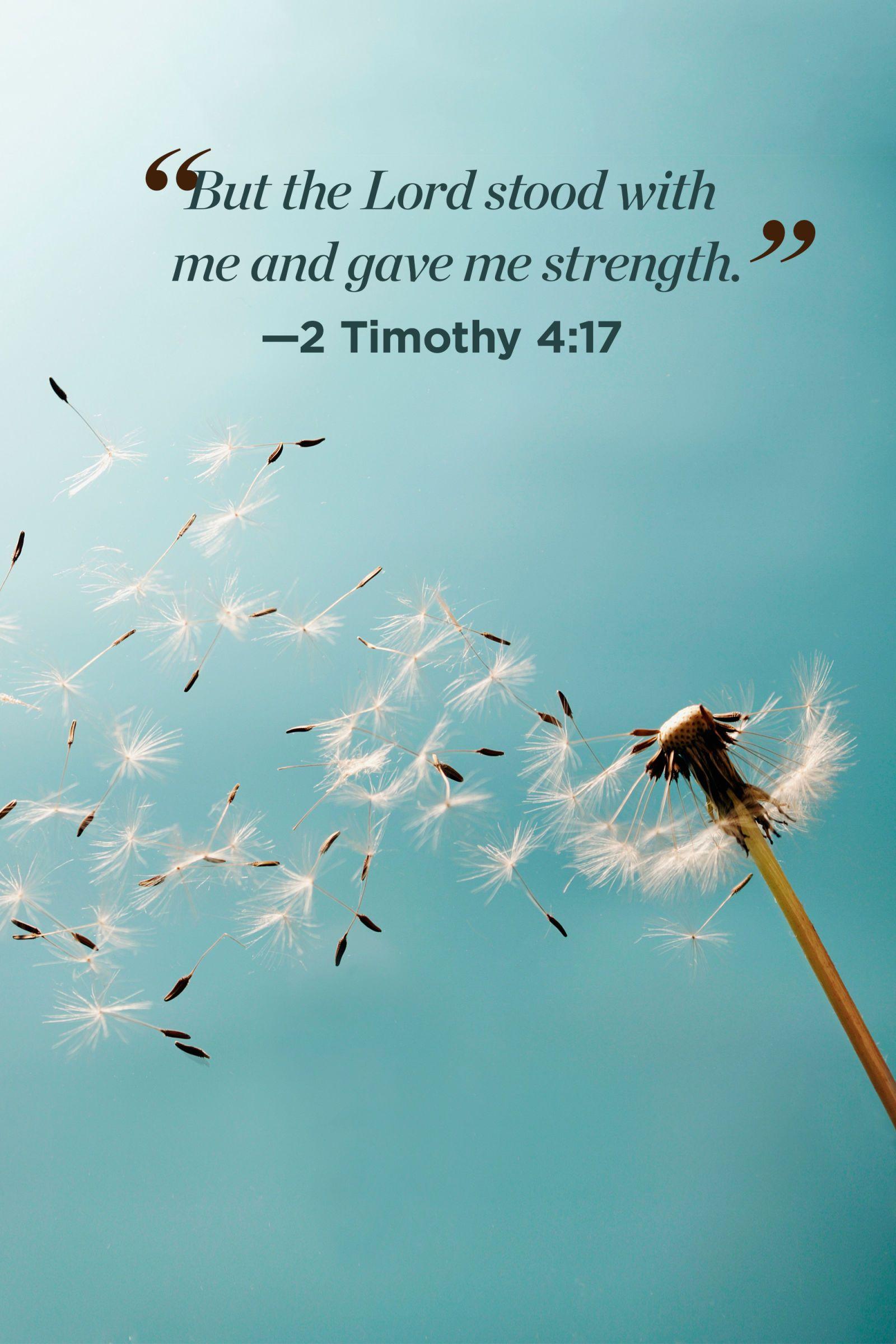Images Of Encouragement Bible Verses
