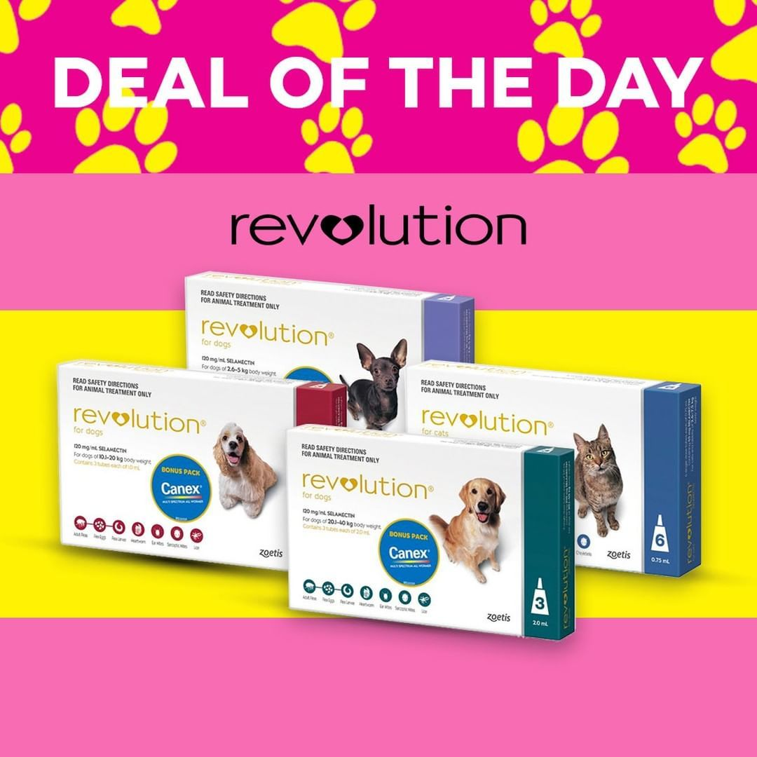5 Dog Food Brands To Avoid For Your Eyes Only Sitewide Only Revolutions