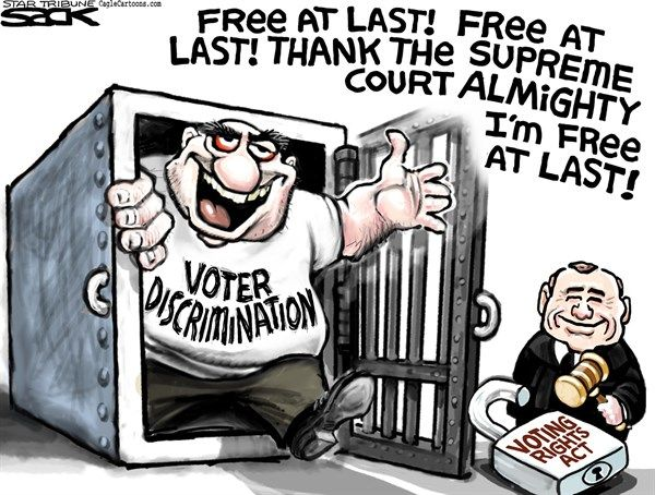 Image result for political cartoons about voting