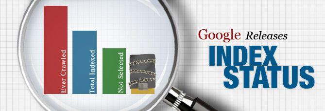 Google Releases Index Status