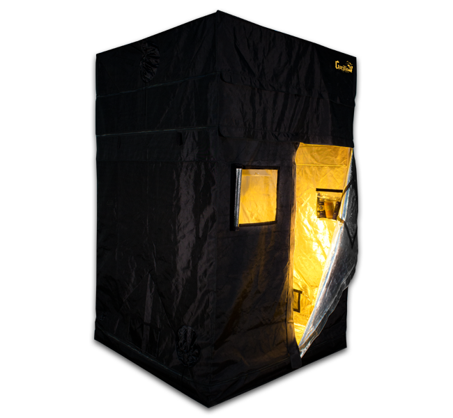 5x5 SuperRoom in a Gorilla Grow Tent. Grow Strong. Grow Gorilla.  sc 1 st  Pinterest & 5x5 SuperRoom in a Gorilla Grow Tent. Grow Strong. Grow Gorilla ...
