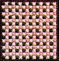 Photo of Cross and Smyrna Check Decorative Stitch