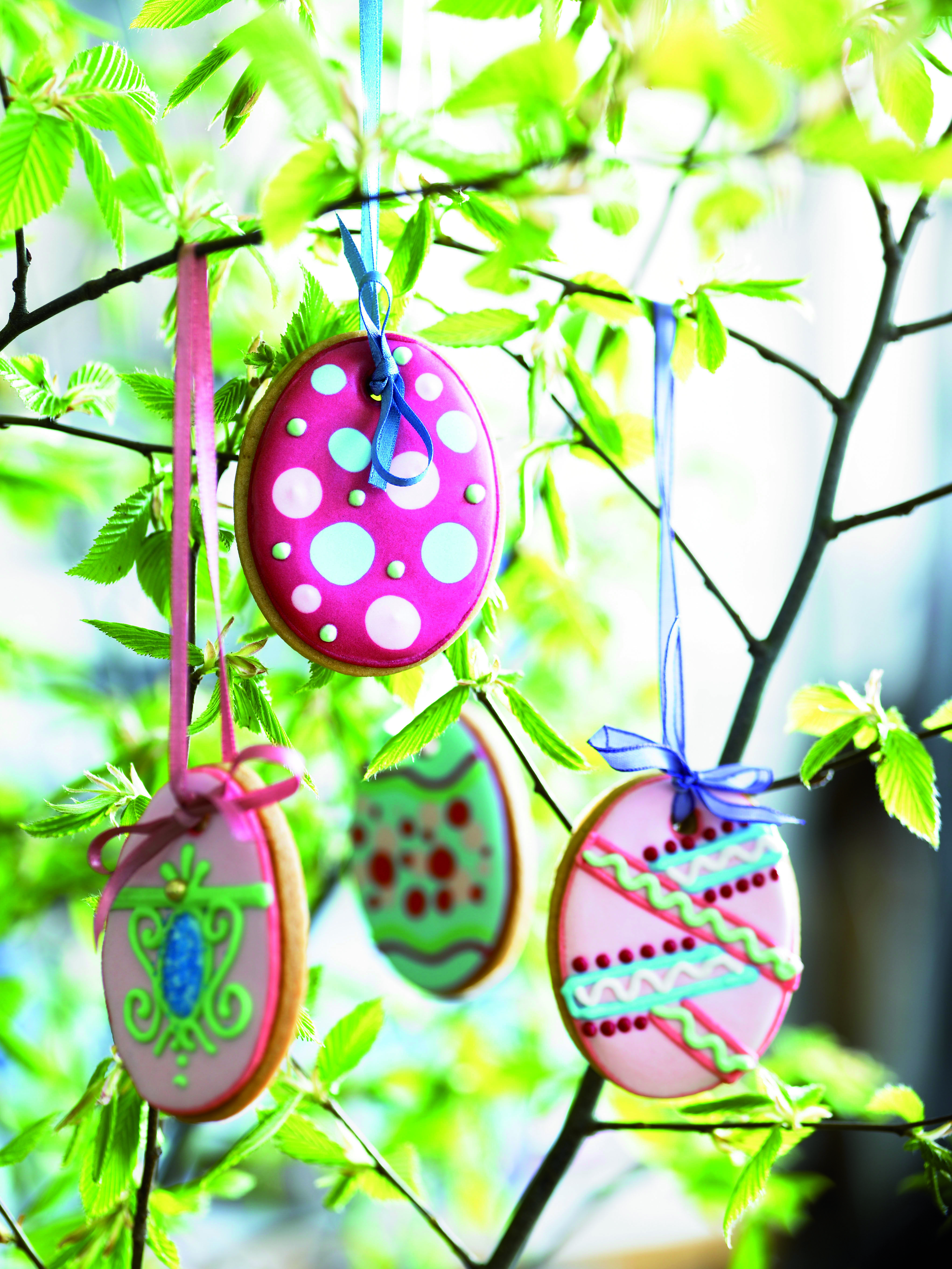 Want to make some #easter #biscuits for your #eastertree? Try our foolproof #biscuitrecipe....