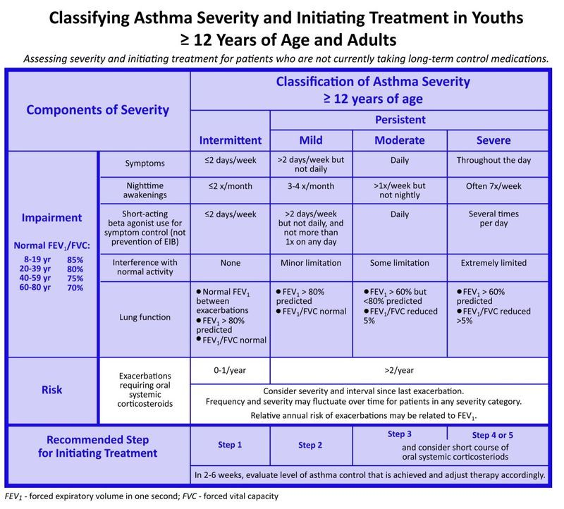 Asthma Guidelines Severity Treatment Initiation Asthma Treatment Asthma Cure Asthma